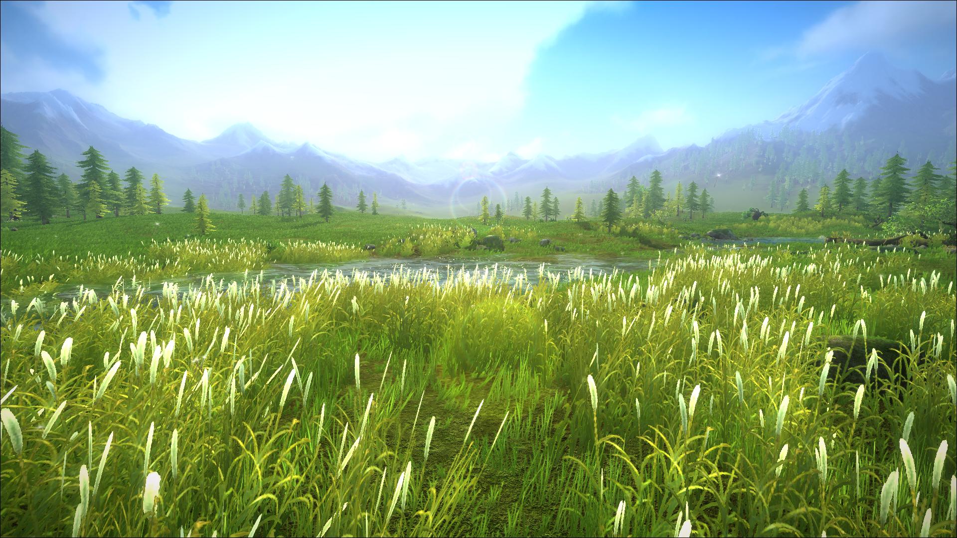 西域-草原
